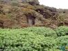 Houses-caves-in La-Dehesa-b